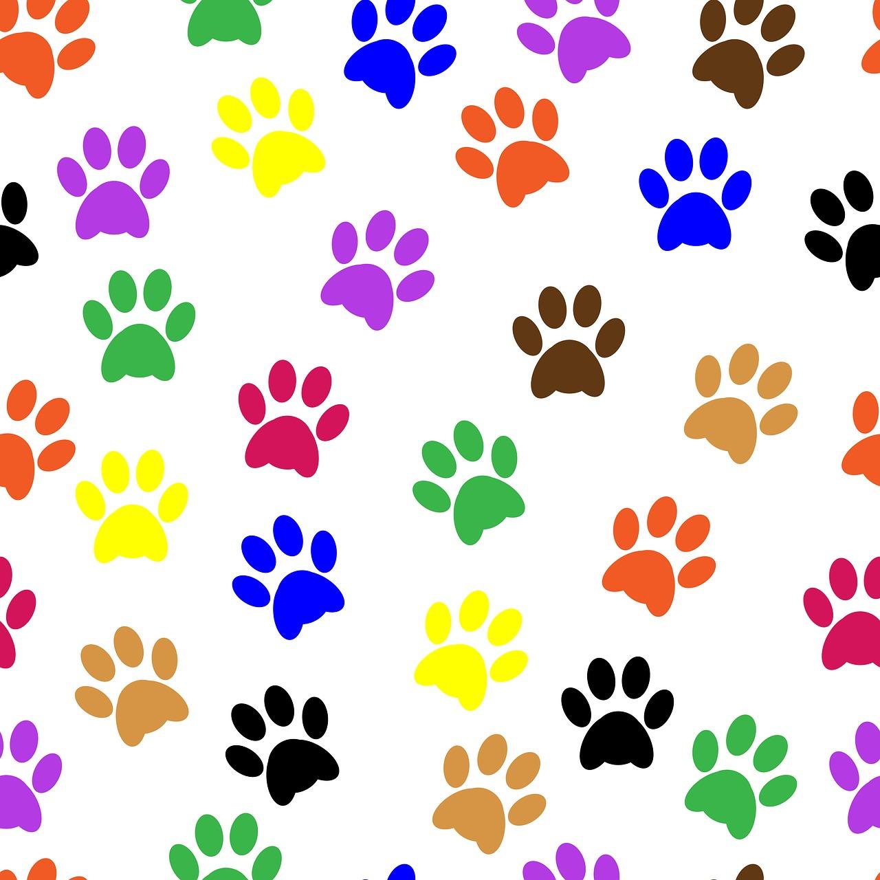 pawprints, paw prints, paw